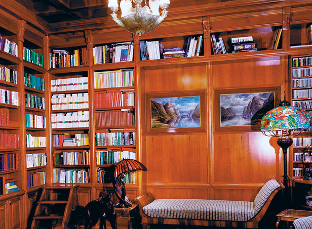 Detail of library with sofa